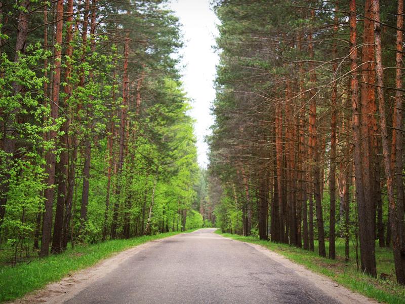 Дорога к загородному комплексу