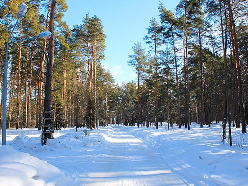 Зимнее Рябеево